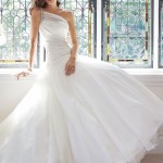 Wedding Dresses Bridal Gowns/Frock Styles