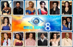 Bigg Boss 8 Contestants Detail